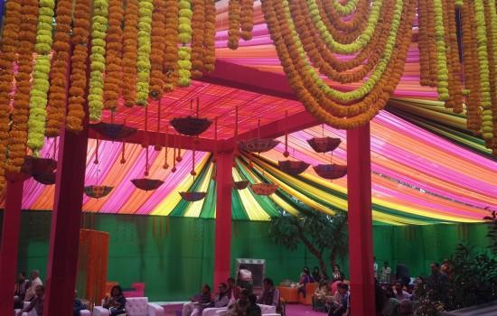 Celebration Garden